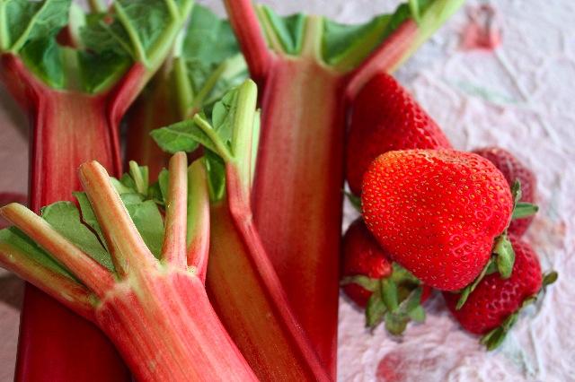 rhubarbstrawberryweb